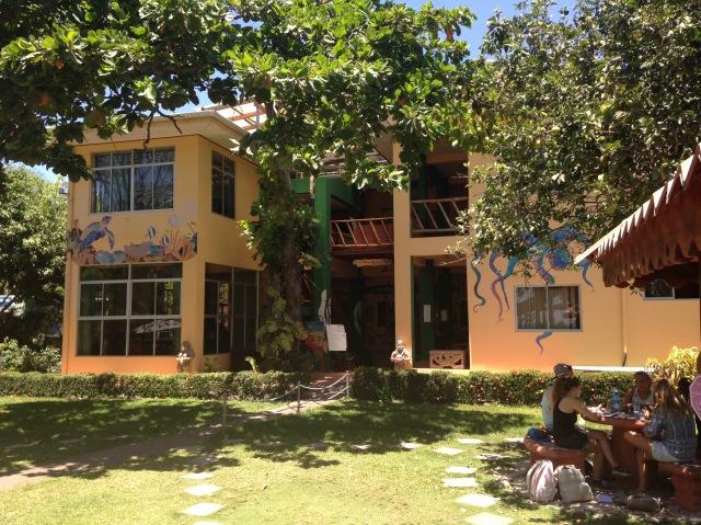 DSCschool